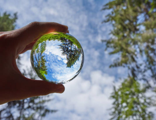 Enhancing Natural Immunity – Mental Emotional Spiritual Immunity (Part 3 of 3)